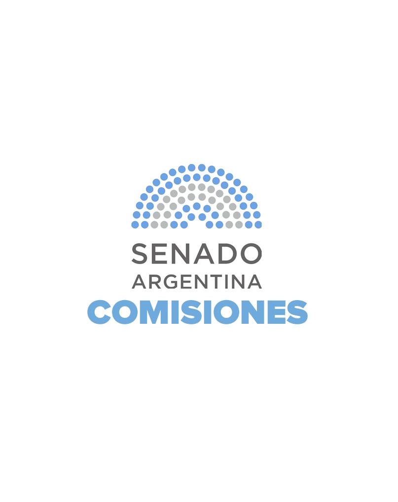 Comisión de Derechos y Garantías